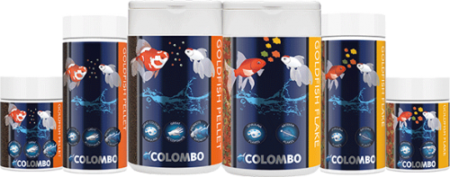 Colombo Goldfish vlokken