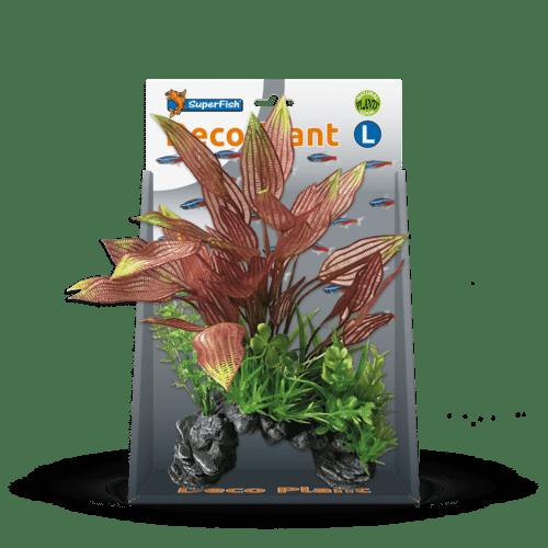 SF DECO PLANT L HENKELIANUS