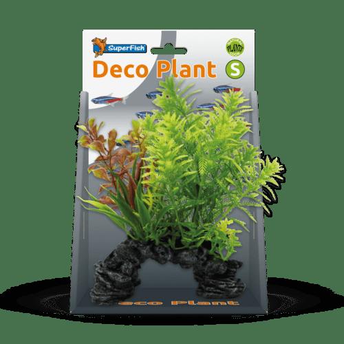 SF DECO PLANT S HOTTONIA