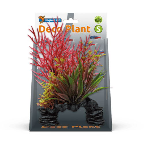 SF DECO PLANT S LUDWIGIA