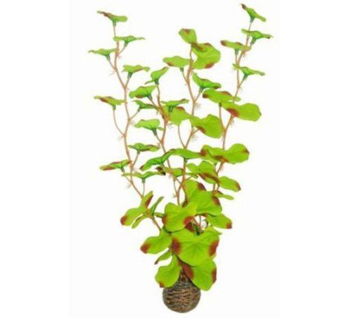 SF EASY PLANT HOOG 30 CM NR. 13