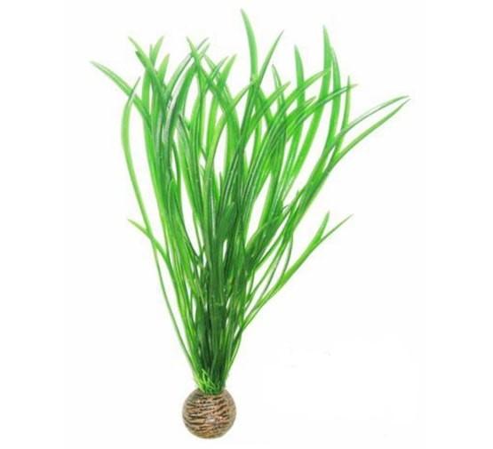 SF EASY PLANT HOOG 30 CM NR. 4
