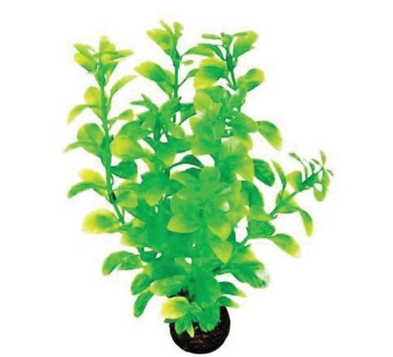 SF EASY PLANT MIDDEL 20 CM NR. 2