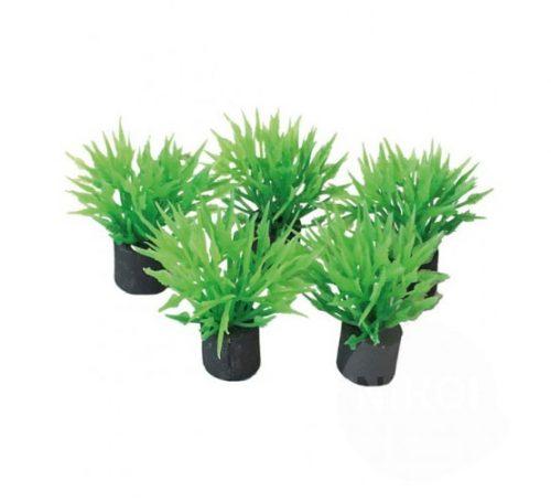 SF EASY PLANTS NANO PLUG 2CM-5 ST
