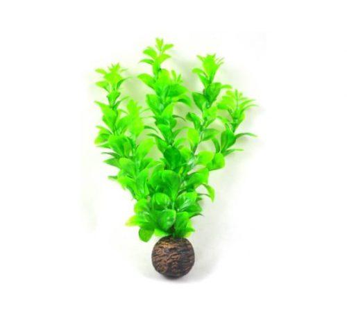 SF EASY PLANT LAAG 13 CM NR. 8