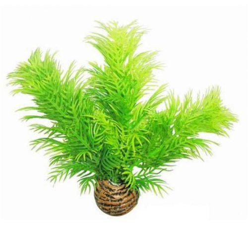 SF EASY PLANT LAAG 13 CM NR. 9