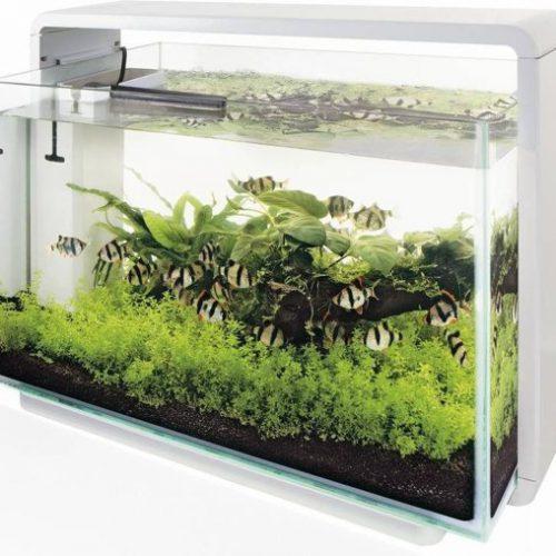 Superfish Home 110 Aquarium