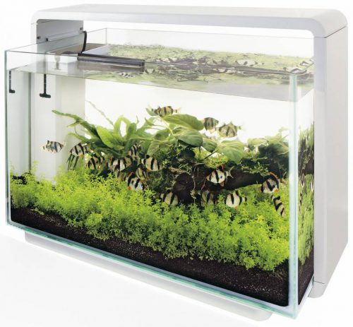 SUPERFISH HOME 60 AQUARIUM WIT - Wit